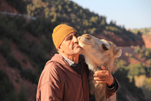 A man and his young camel on the road to Oukaimeden